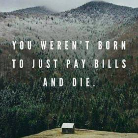 We weren't born to just pay the bills and die.jpg